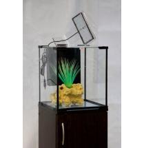 Аквариум АКВАС 20 литров, с led освещением и фильтром