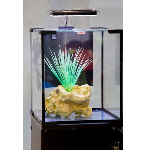 Аквариум АКВАС 10 литров, с led освещением и фильтром